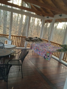 My friend Cheryl's home in the woods